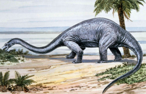 Diplodocus on all fours, feeding low to the ground.