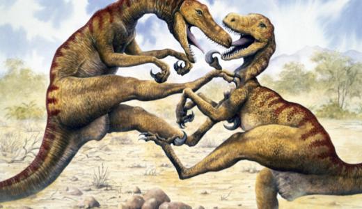 2 dinosaurs in combat.