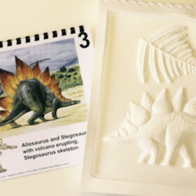 Dinosaur tactile image from Dinosaurs Roar! series