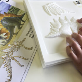 A hand feeling a tactile picture of a stegosaurus.