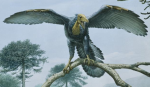 Archaeopteryx with wings outspread, resting on a tree branch.