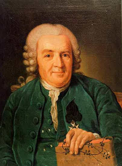 Portrait of Carl Linnaeus, a man wearing an old fashioned white wig and green frock coat.
