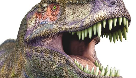 T-Rex with a wide mouth showing all of its sharp teeth.