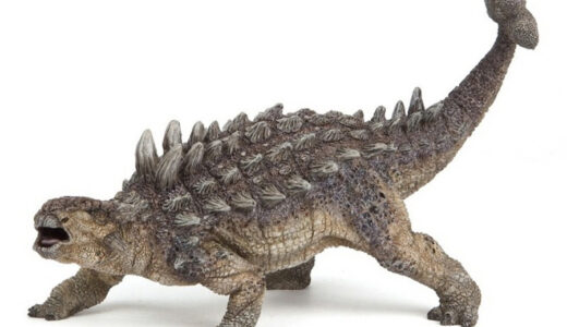 Ankylosaurus four legged dinosaur with spikes on back and club at end of tail.