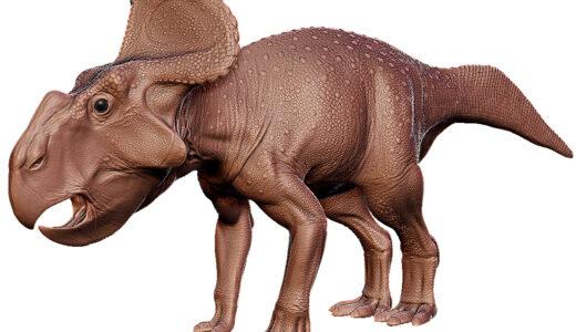 Protoceratops, a large headed four legged dinosaur with a beak like mouth.