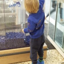 Child putting plastic coin in Tesco bags of Help collection bin.