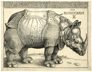 Woodcut of a rhinocesos. The fine detailing of its skin makes it appear to be wearing a coat of armour.