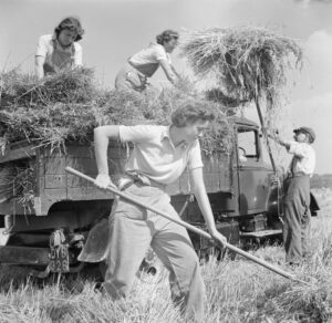 Black and white photograph of ladies ploughing the land.