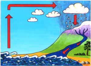 Illusration of the sea, a hill side with clouds above and arrows showing precipitation.