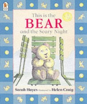This is the Bear and the Scary Night. Written by Sarah Hayes and illustrated by Helen Craig. Teddy Bear sitting on a garden chair, looking scared with paws held close to his chest.