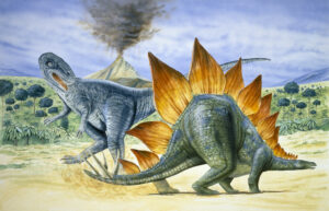 Illustration showing an Allosaurus and Stegasaurus in the foreground and an erupting volcano in the background.
