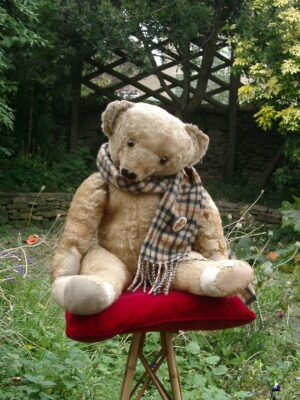 Aloysus, a light brown Steiff bear in checked Burberry scarf, seated on velvet cushioned chair in a cottage garden.