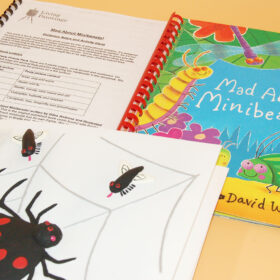 Guidance notes booklet, tactile picture showing spider in a web, front cover of picture book with colourful illustrations of insects