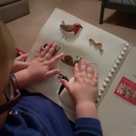 Boy feeling a tactile picture of garden bugs and robin.