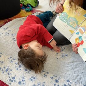 Teddy enjoying a book whilst lying on a mat on the flor.